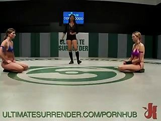 Fpz3d s vs g 3d toon fistfight catfight big tits onesided - 1 part 8