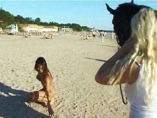 Naked Teen Riding A Horse At The Beach Turns Heads