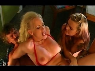 Swedish Porn - Lustgården Cd1