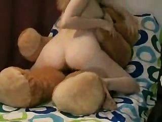 Ridding The Teddy Bear!