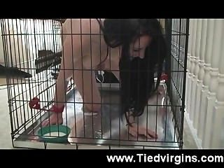 Caged, Tied And Made To Cum