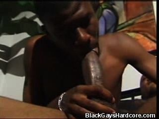 Black Studs Cock Sucking And Fucking