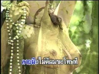 Sexy Thai Playboy Karaoke
