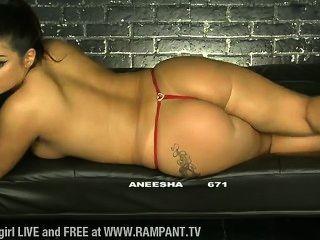 Aneesha Bbtv