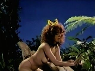 1985 - Jungle Cat